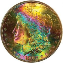 Toned Morgan Dollars